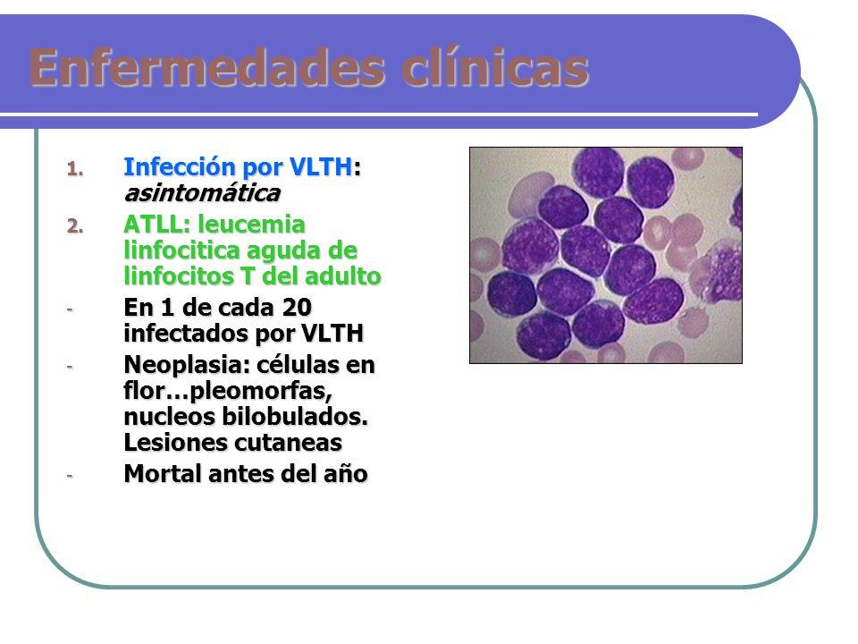 Enfermedades clínicas