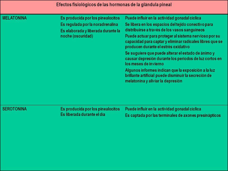 Efectos fisiológicos de las hormonas de la glándula pineal