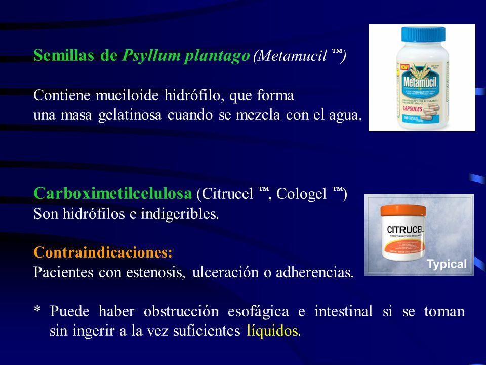 Semillas de Psyllum plantago (Metamucil ™)