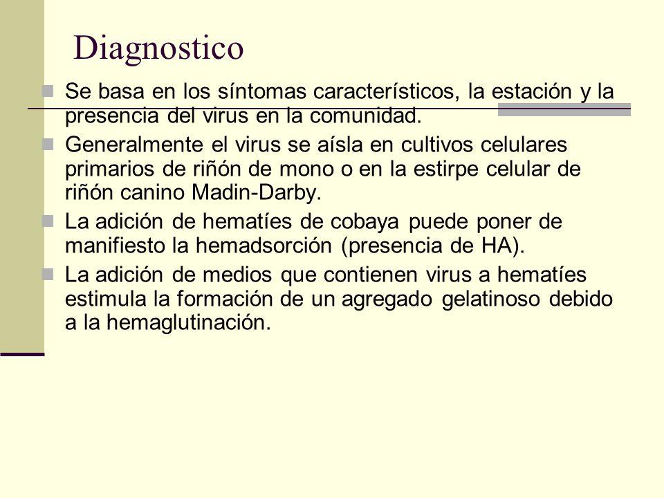 Diagnostico Se basa en los síntomas característicos, la estación y la presencia del virus en la comunidad.