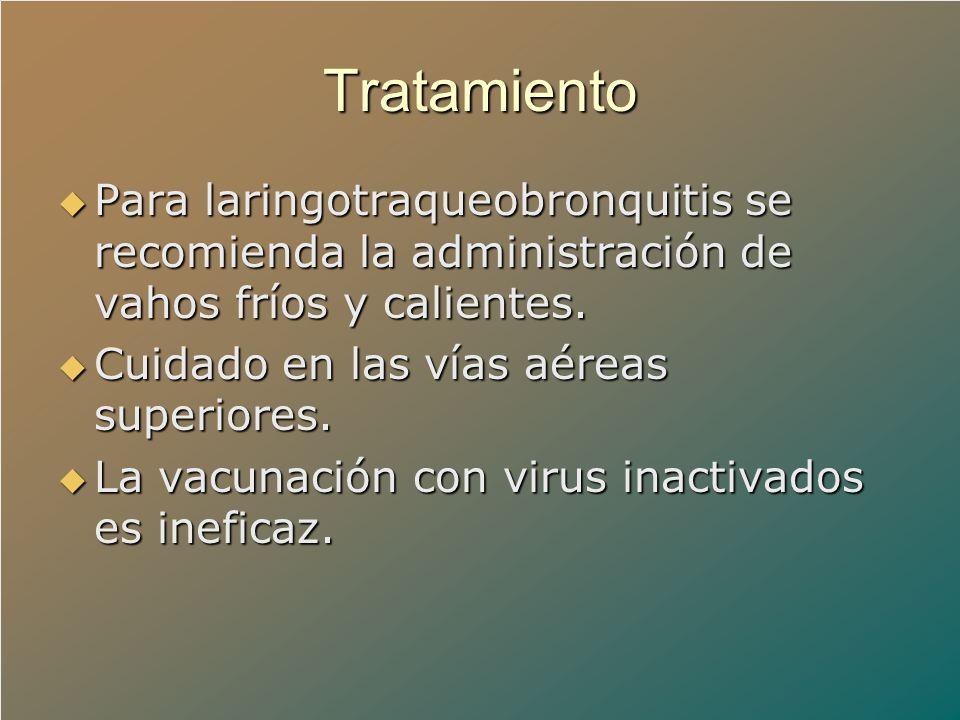 Tratamiento Para laringotraqueobronquitis se recomienda la administración de vahos fríos y calientes.