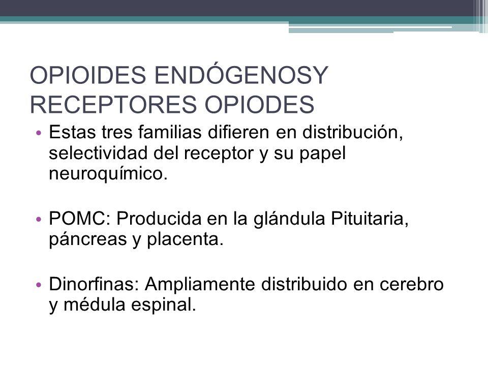 OPIOIDES ENDÓGENOSY RECEPTORES OPIODES