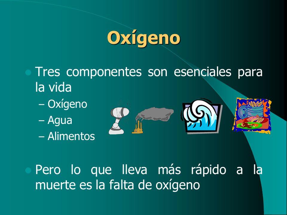 Oxígeno Tres componentes son esenciales para la vida