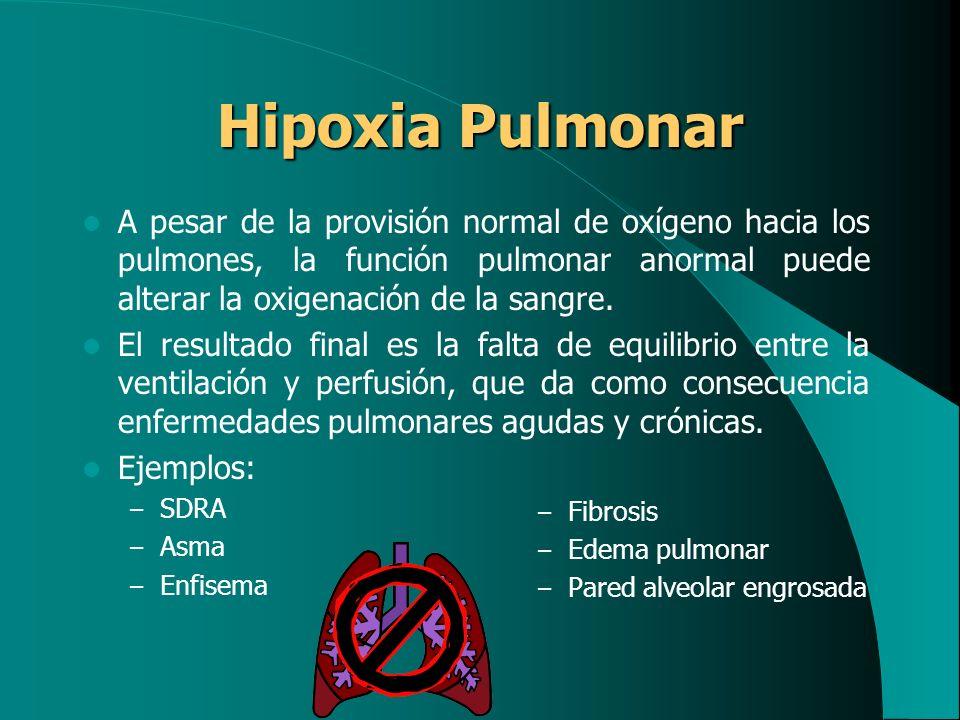 Hipoxia Pulmonar A pesar de la provisión normal de oxígeno hacia los pulmones, la función pulmonar anormal puede alterar la oxigenación de la sangre.