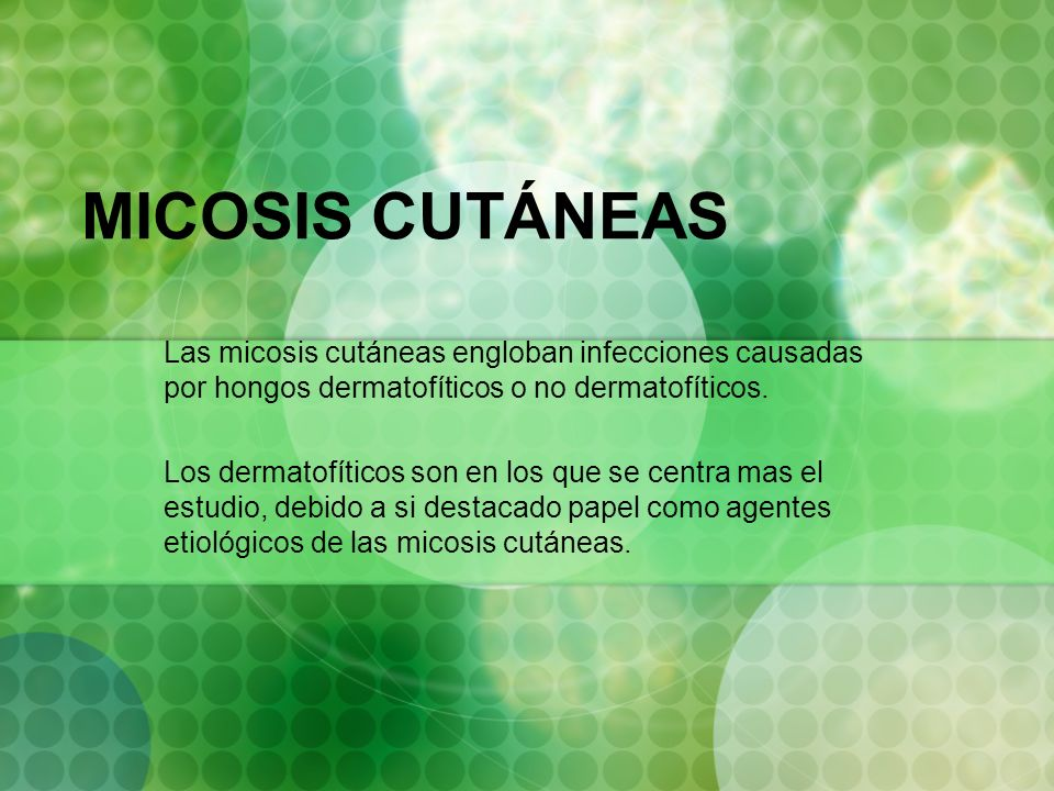 MICOSIS CUTÁNEAS Las micosis cutáneas engloban infecciones causadas por hongos dermatofíticos o no dermatofíticos.
