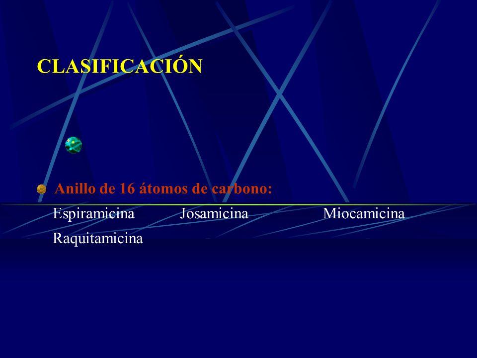 CLASIFICACIÓN Anillo de 16 átomos de carbono: