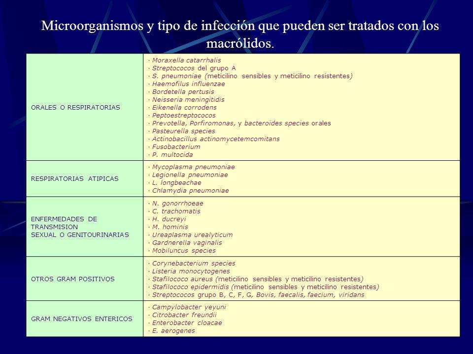 Microorganismos y tipo de infección que pueden ser tratados con los macrólidos.