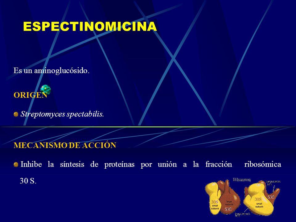 ESPECTINOMICINA Es un aminoglucósido. ORIGEN Streptomyces spectabilis.