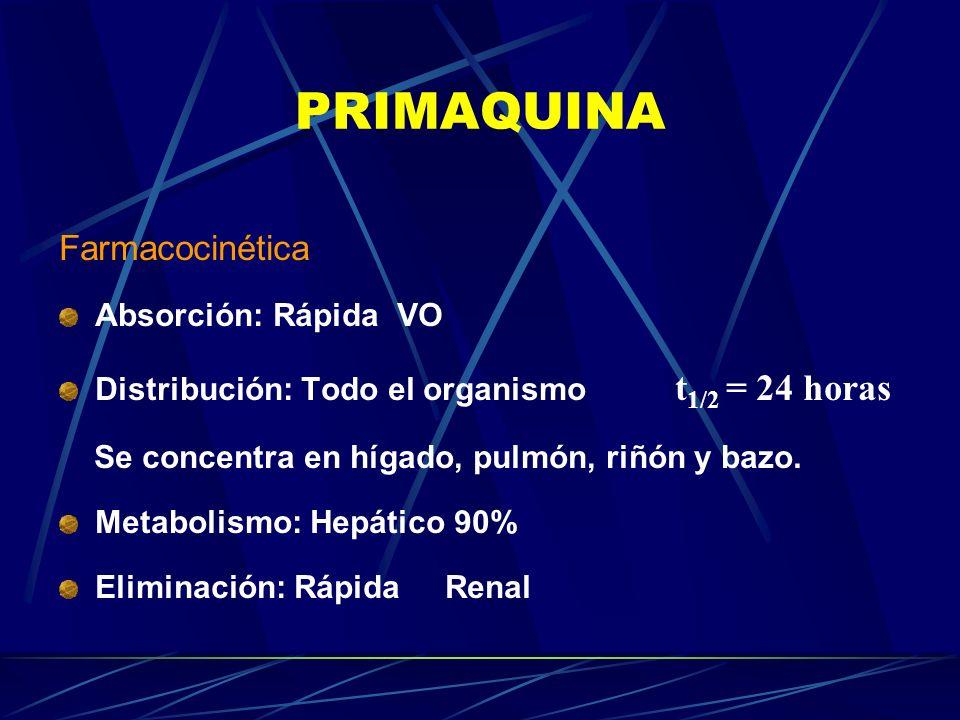 PRIMAQUINA Farmacocinética Absorción: Rápida VO