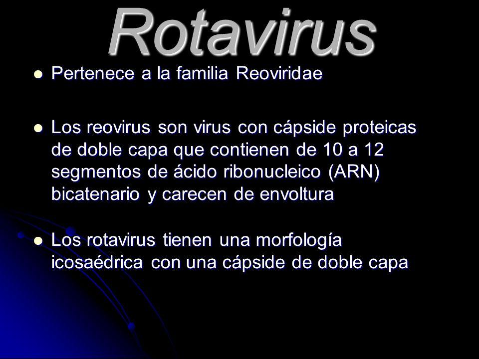 Rotavirus Pertenece a la familia Reoviridae
