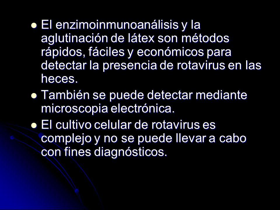 El enzimoinmunoanálisis y la aglutinación de látex son métodos rápidos, fáciles y económicos para detectar la presencia de rotavirus en las heces.