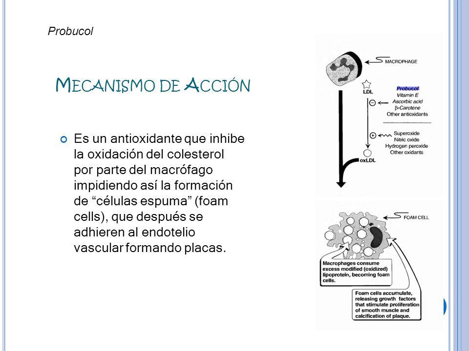 Mecanismo de AcciónProbucol.