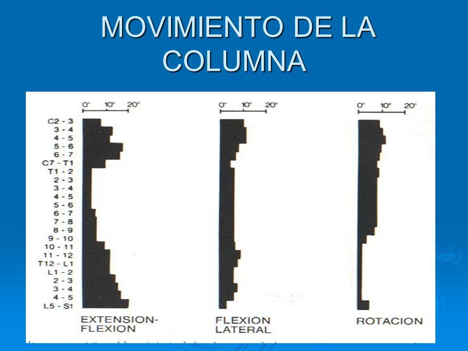 MOVIMIENTO DE LA COLUMNA