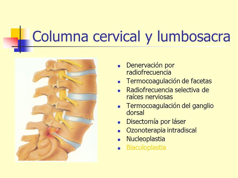 Columna cervical y lumbosacra