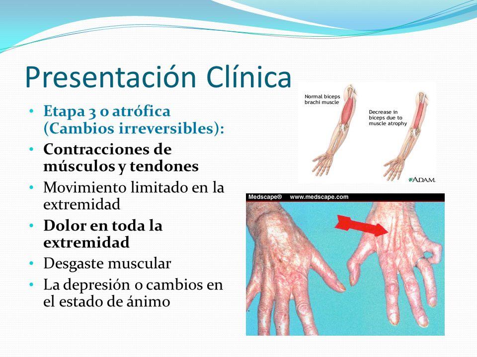 Presentación Clínica Etapa 3 o atrófica (Cambios irreversibles):