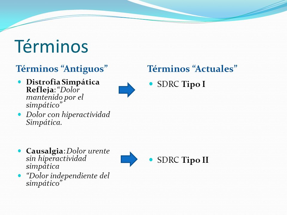 Términos Términos Antiguos Términos Actuales SDRC Tipo I