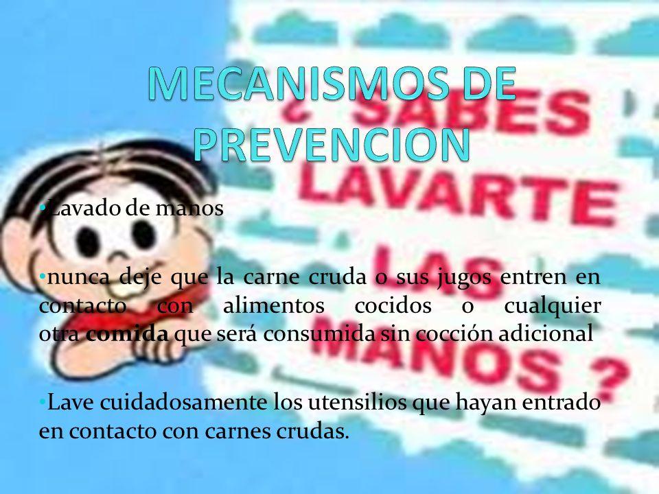 MECANISMOS DE PREVENCION