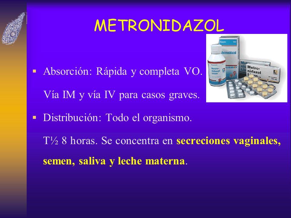 METRONIDAZOL Absorción: Rápida y completa VO.