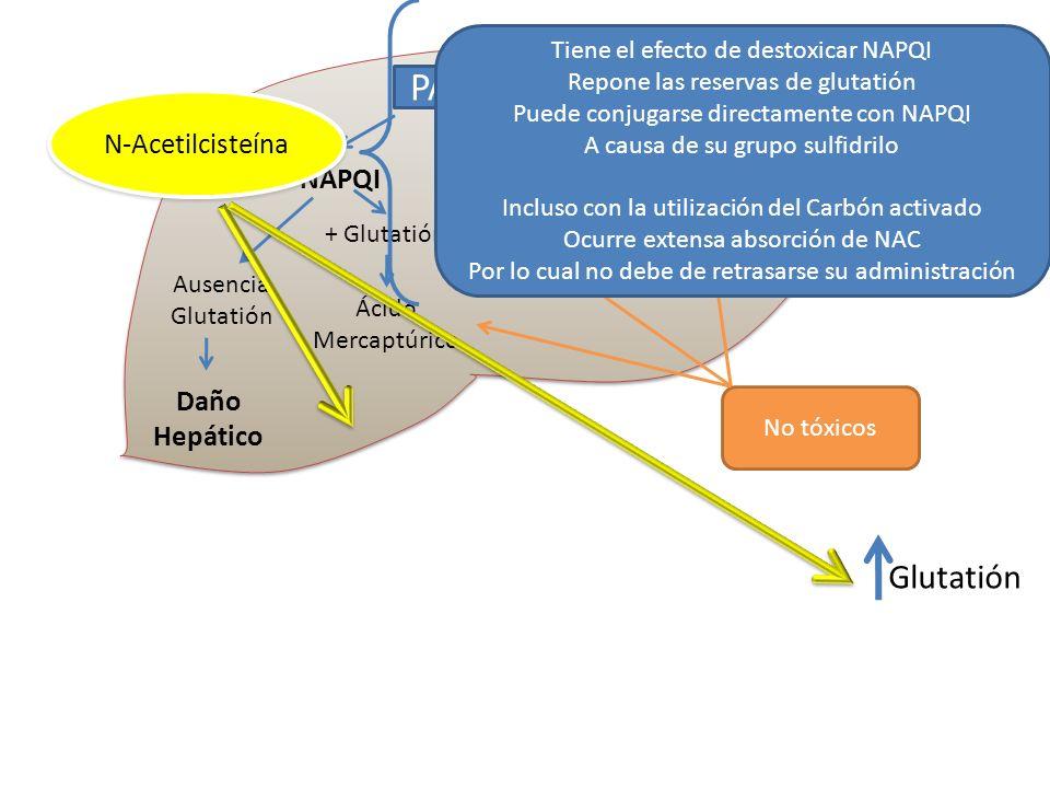 PARACETAMOL Glutatión N-Acetilcisteína NAPQI Daño Hepático