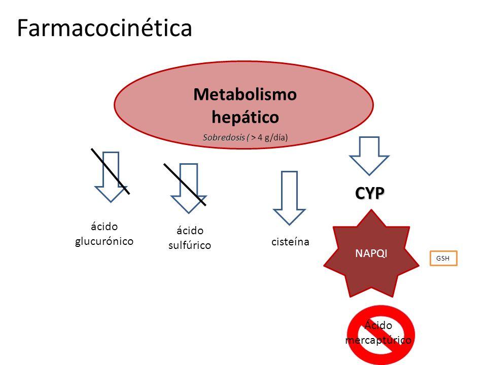 Farmacocinética Metabolismo hepático CYP ácido glucurónico