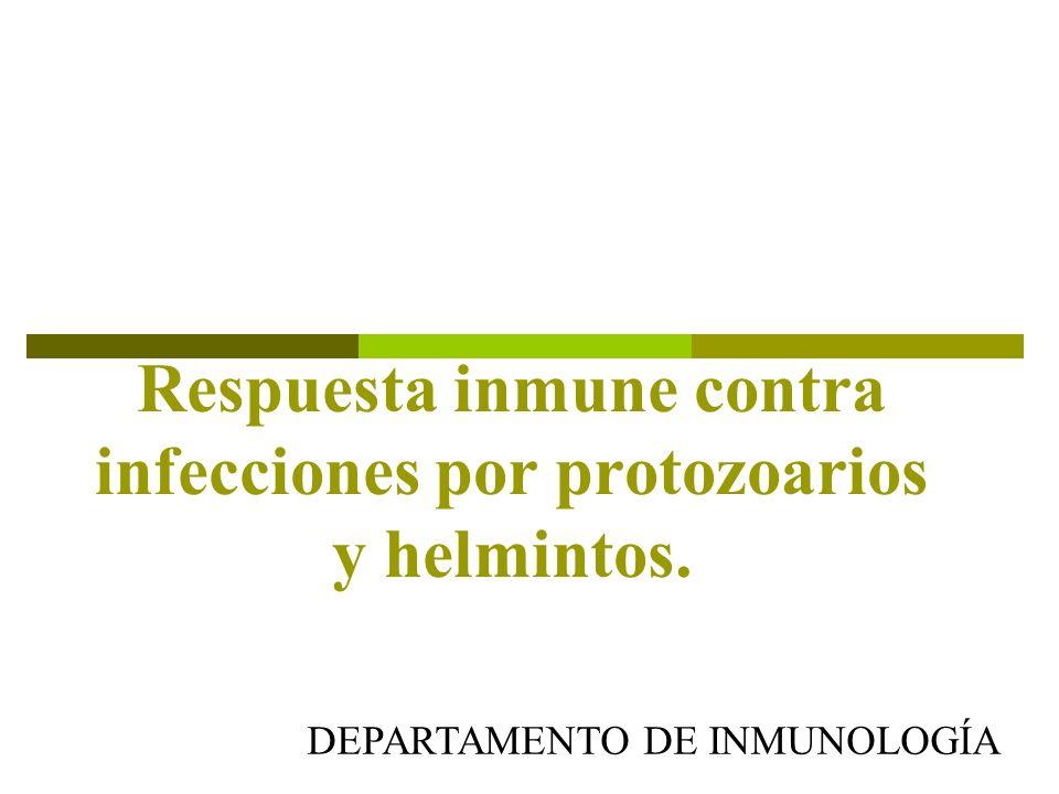 Respuesta inmune contra infecciones por protozoarios y helmintos.