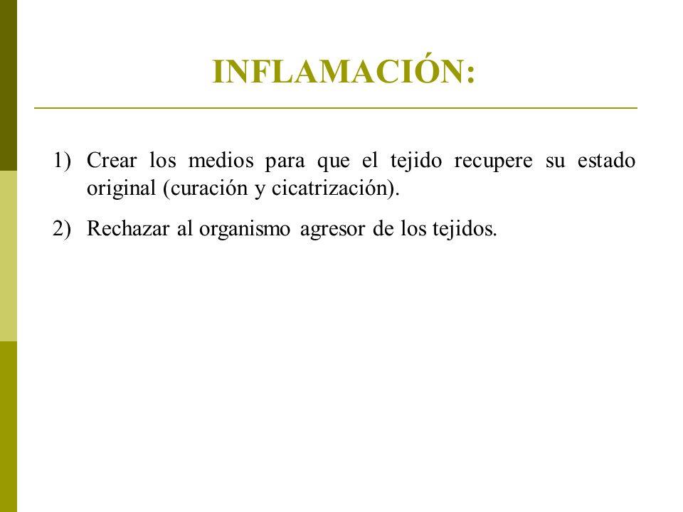 INFLAMACIÓN: Crear los medios para que el tejido recupere su estado original (curación y cicatrización).