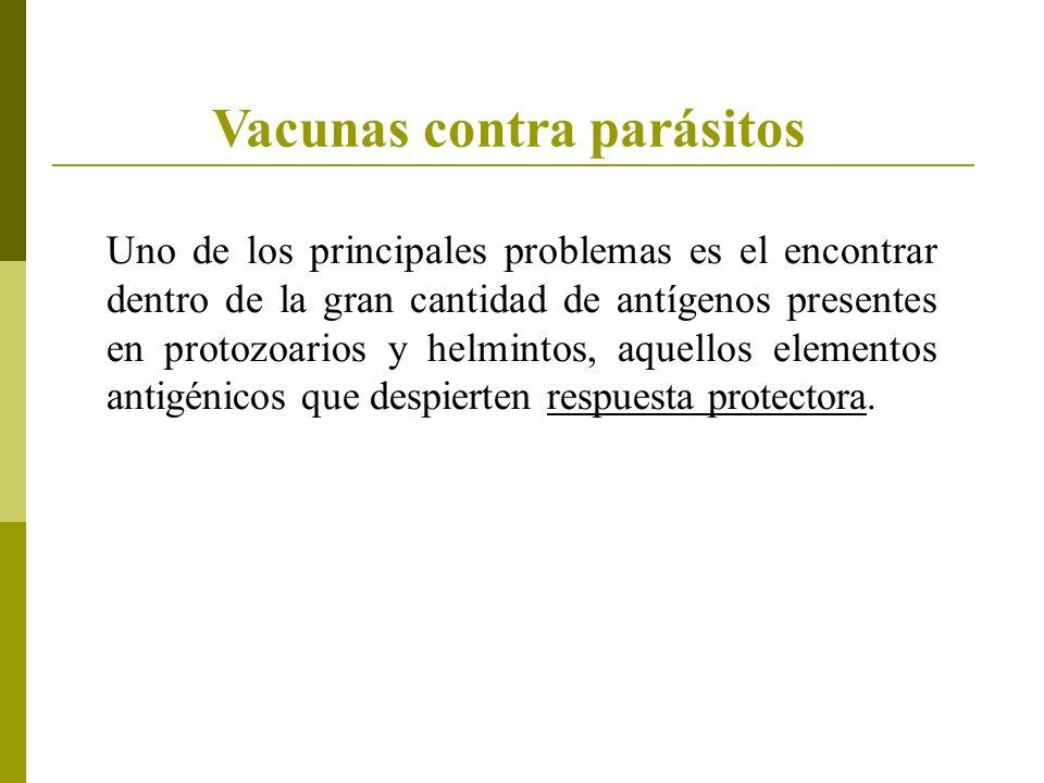 Vacunas contra parásitos