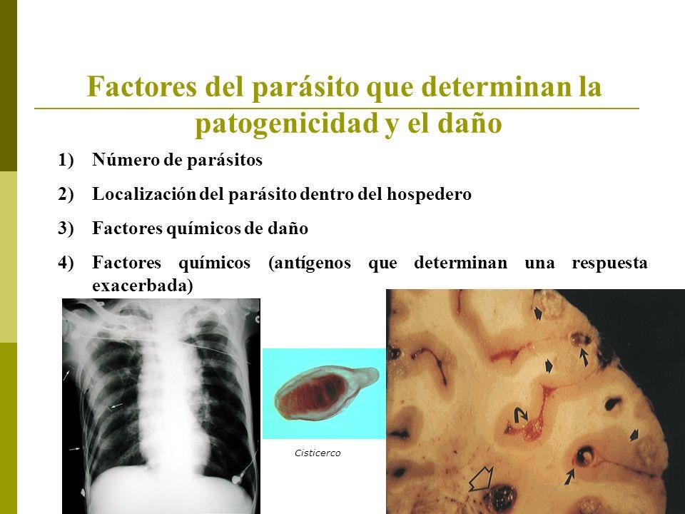 Factores del parásito que determinan la patogenicidad y el daño