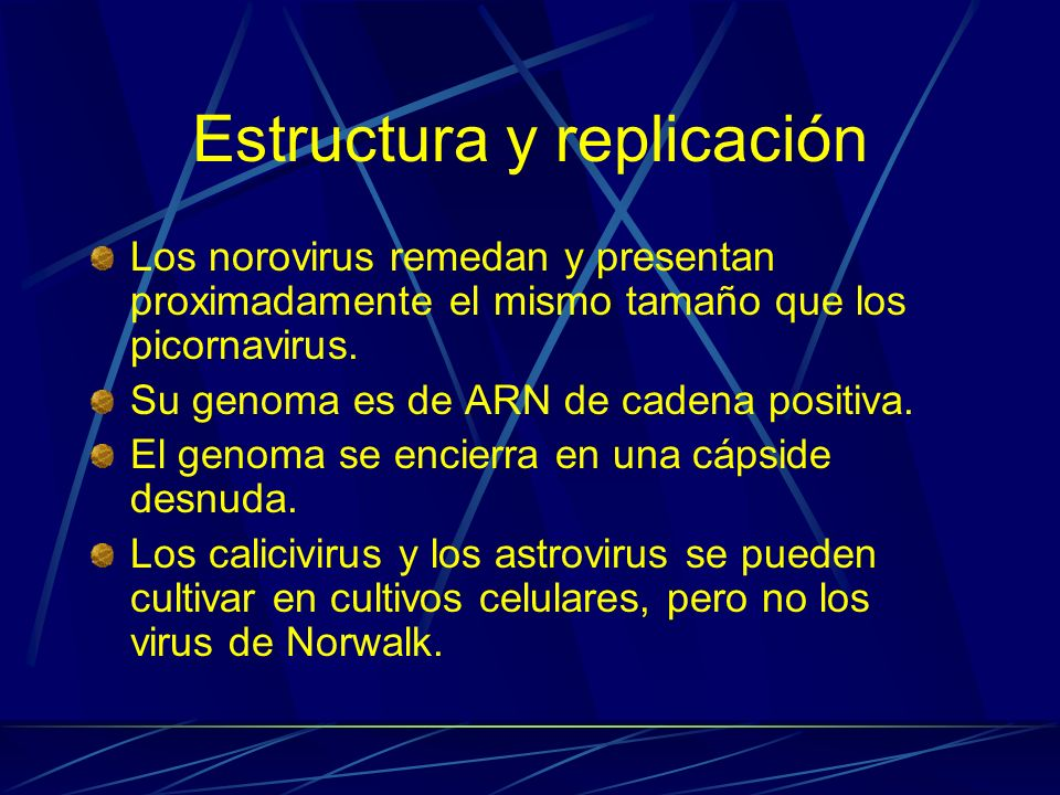 Estructura y replicación