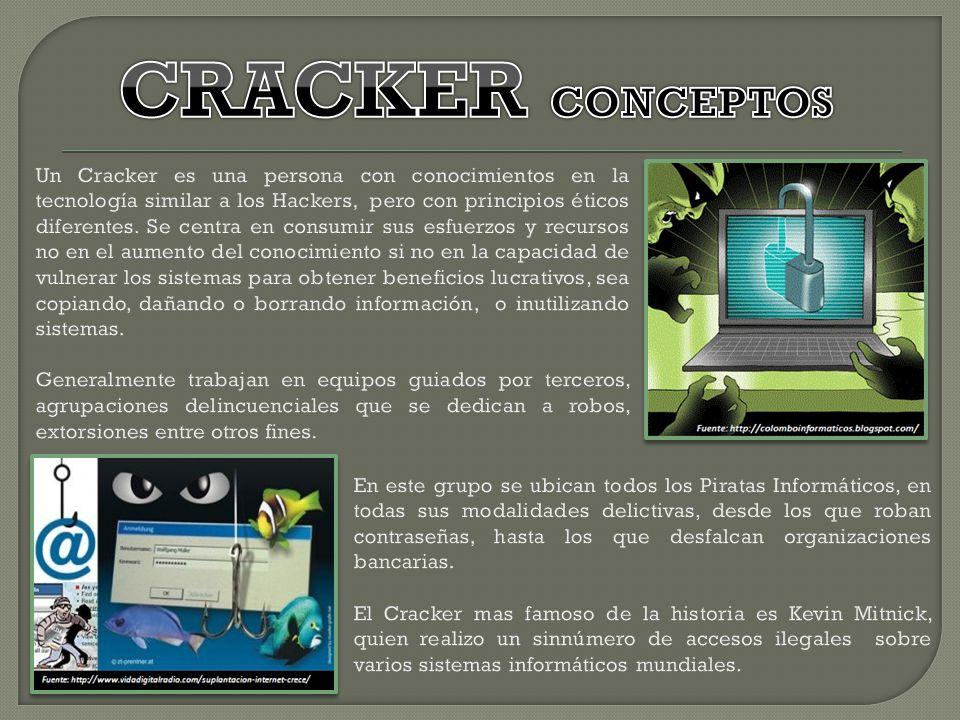 CRACKER CONCEPTOS