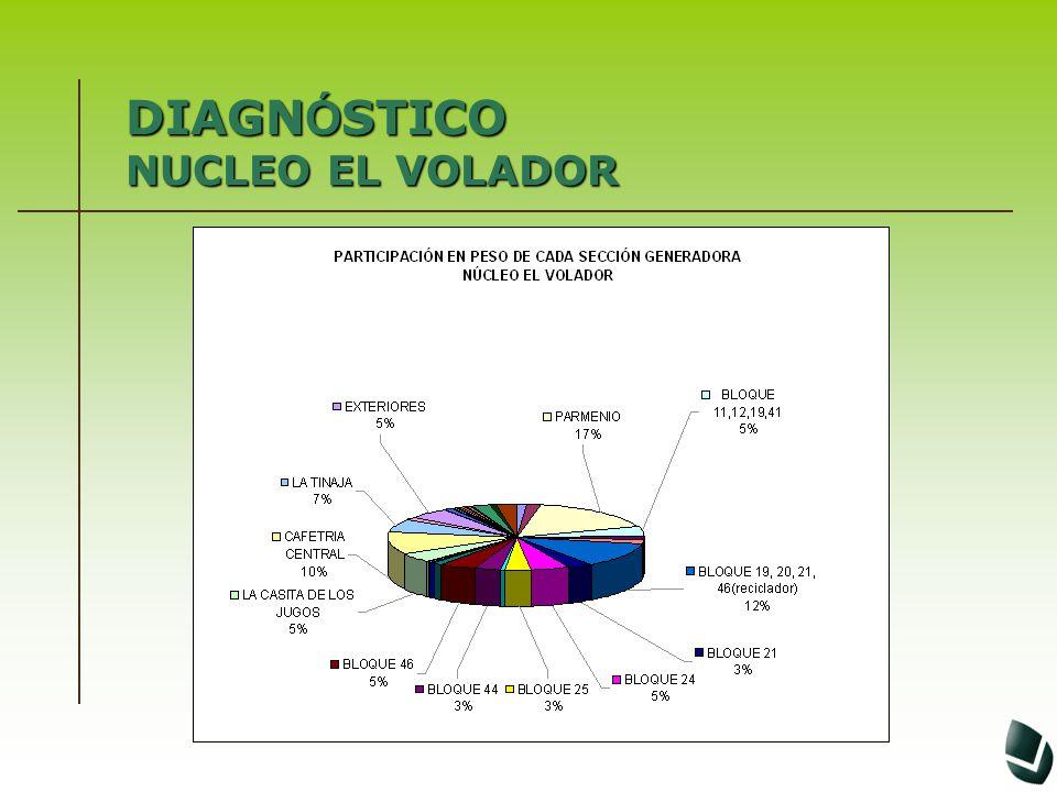 DIAGNÓSTICO NUCLEO EL VOLADOR