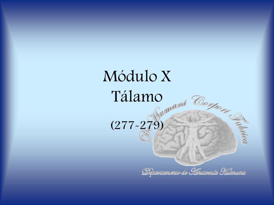 Módulo X Tálamo (277-279)