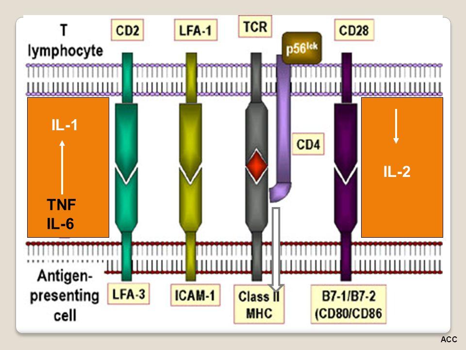 IL-1 IL-2 TNF IL-6 ACC