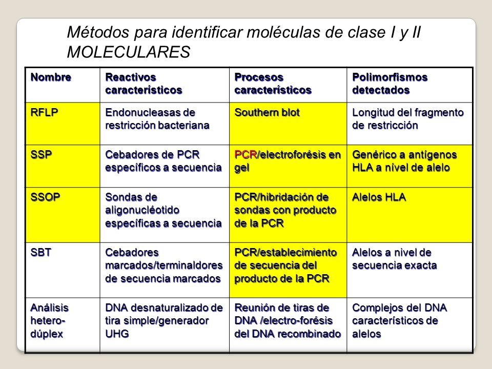 Métodos para identificar moléculas de clase I y II MOLECULARES