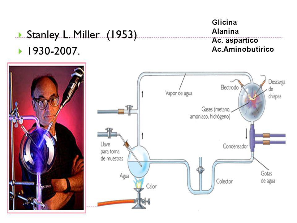 Stanley L. Miller (1953) 1930-2007. Glicina Alanina Ac. aspartico