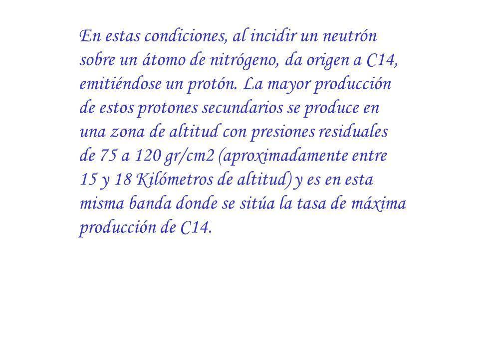 En estas condiciones, al incidir un neutrón sobre un átomo de nitrógeno, da origen a C14, emitiéndose un protón.
