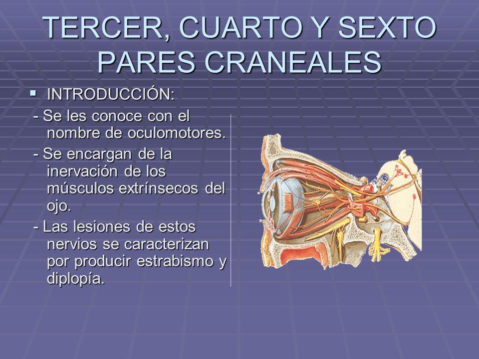 TERCER, CUARTO Y SEXTO PARES CRANEALES