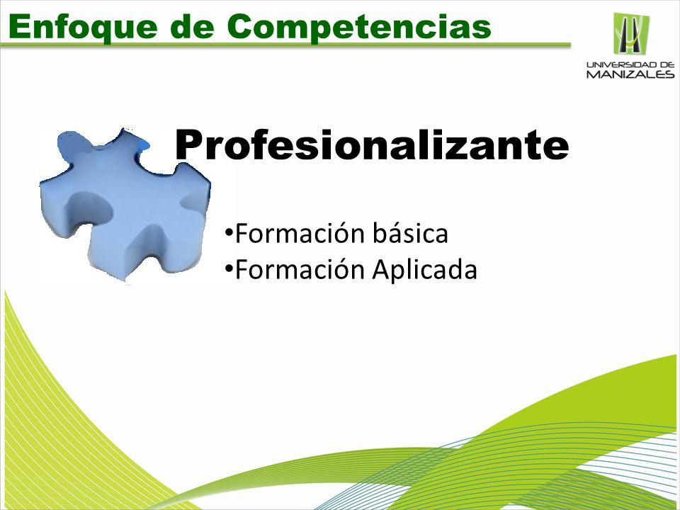 Profesionalizante Enfoque de Competencias Formación básica