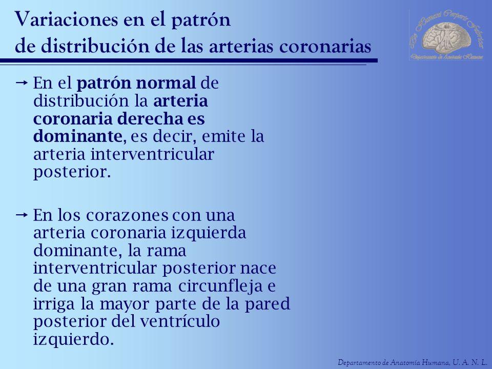 Variaciones en el patrón de distribución de las arterias coronarias