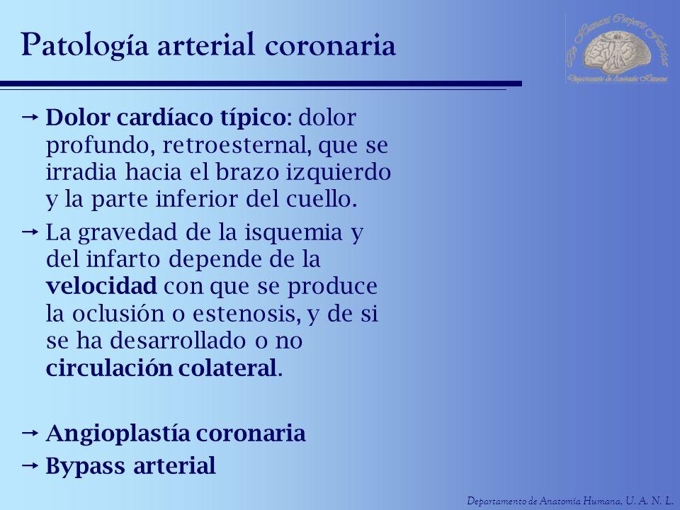 Patología arterial coronaria