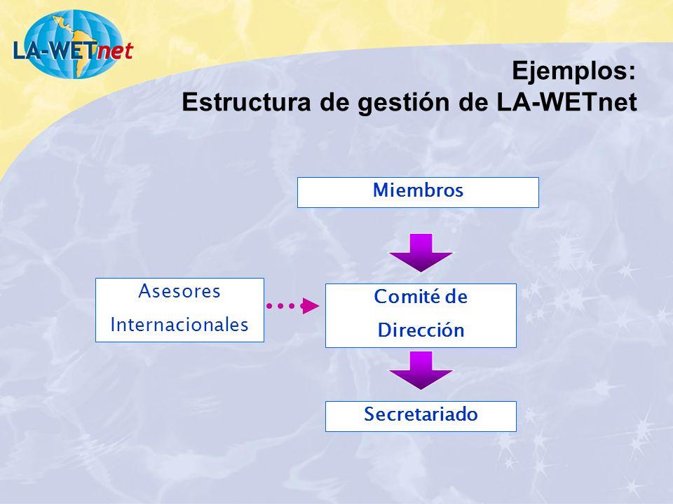 Ejemplos: Estructura de gestión de LA-WETnet
