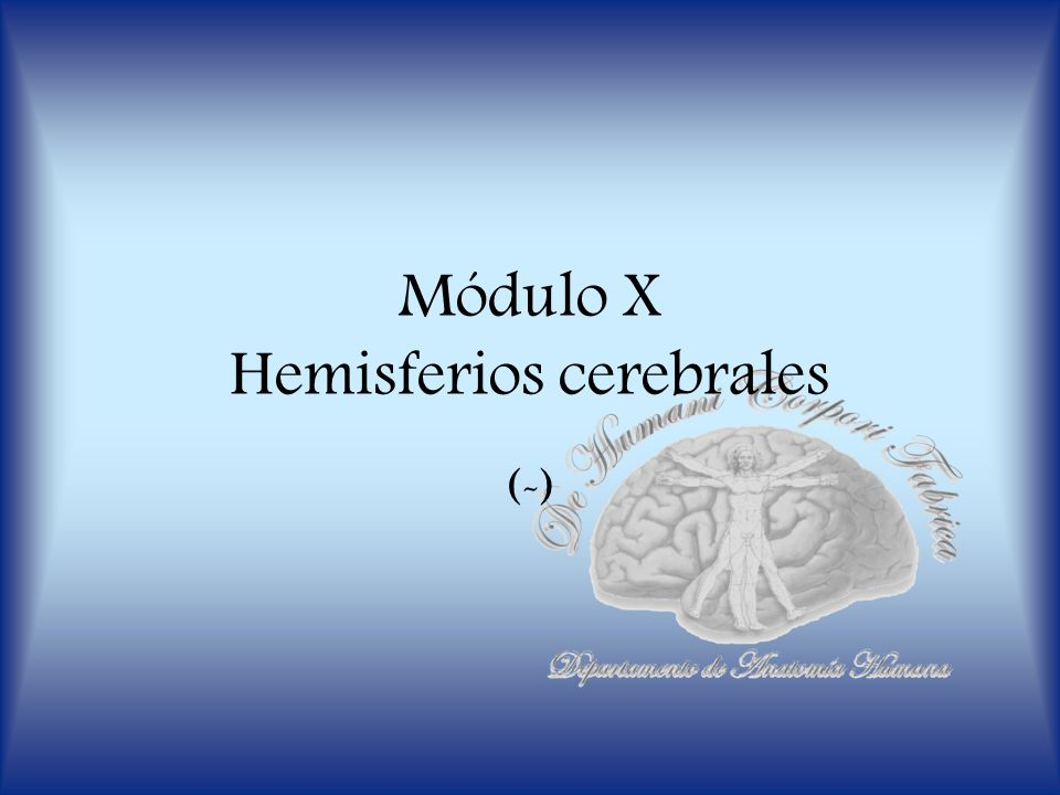 Módulo X Hemisferios cerebrales