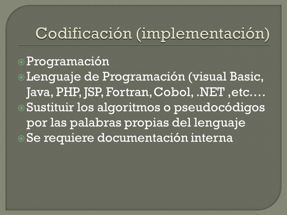 Codificación (implementación)