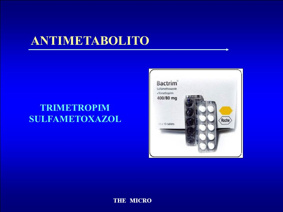 ANTIMETABOLITO TRIMETROPIM SULFAMETOXAZOL THE MICRO