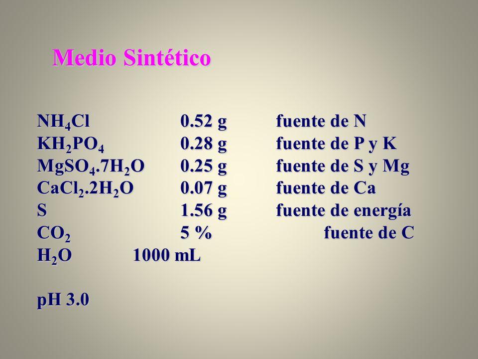 Medio Sintético NH4Cl 0.52 g fuente de N KH2PO4 0.28 g fuente de P y K