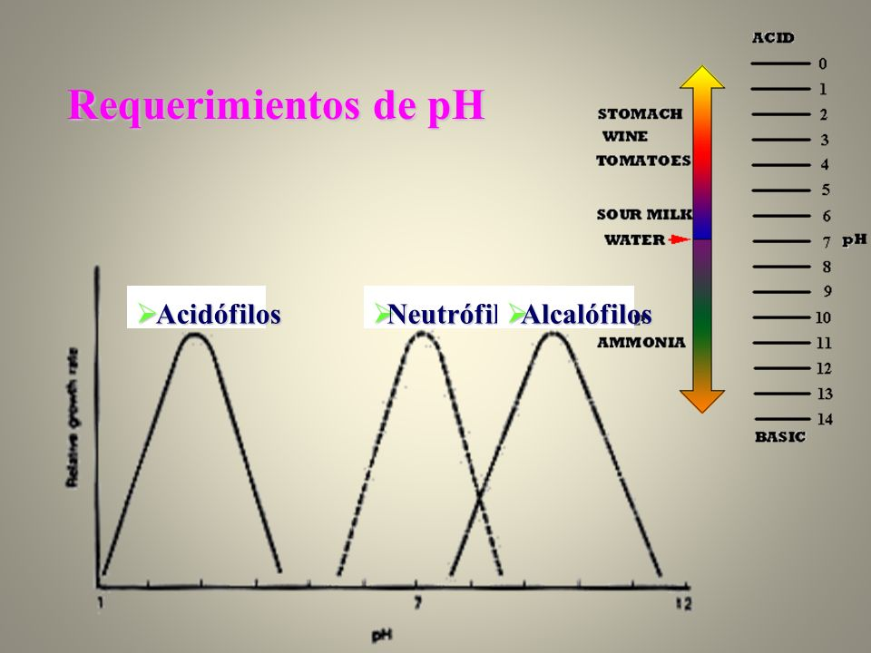 Requerimientos de pH Acidófilos Neutrófilos Alcalófilos