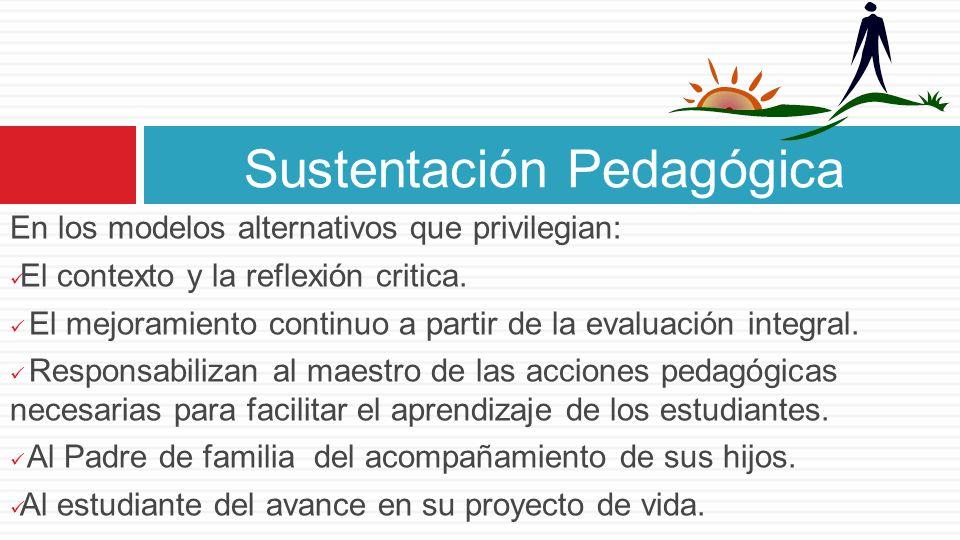 Sustentación Pedagógica