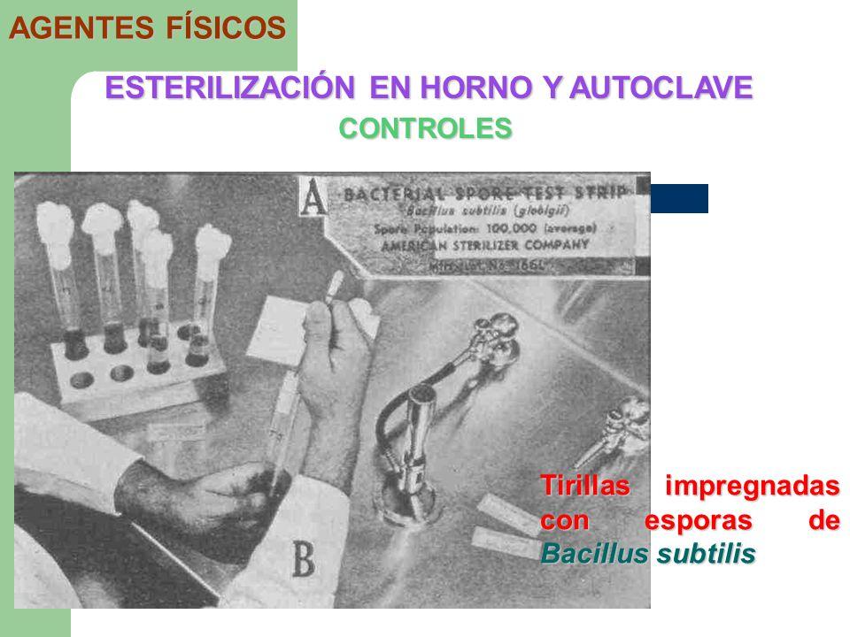 ESTERILIZACIÓN EN HORNO Y AUTOCLAVE