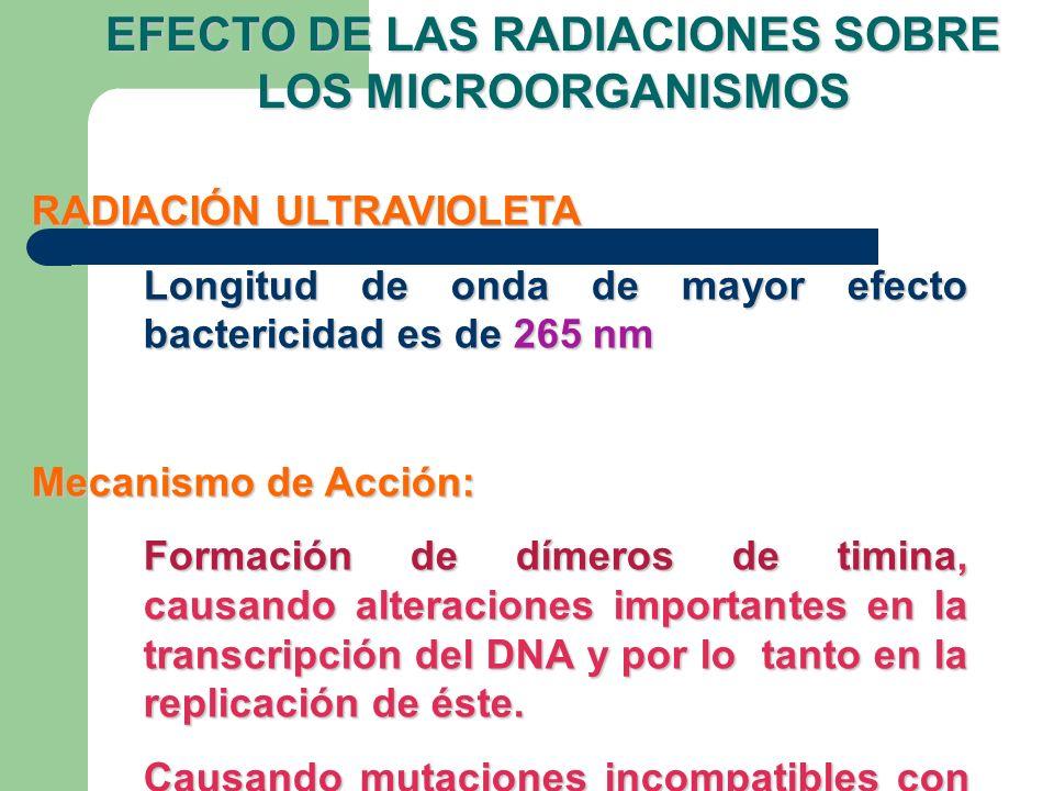 EFECTO DE LAS RADIACIONES SOBRE LOS MICROORGANISMOS