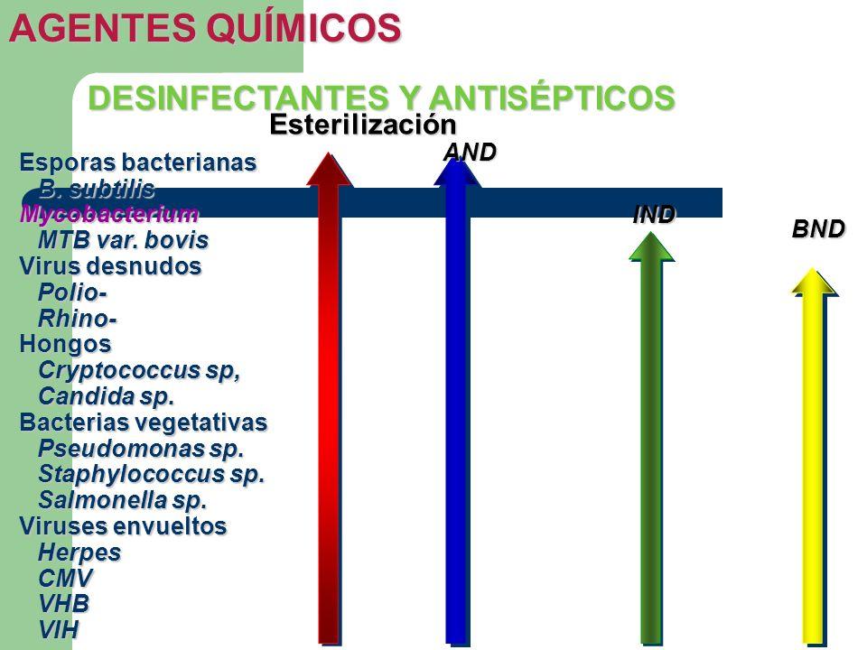 AGENTES QUÍMICOS DESINFECTANTES Y ANTISÉPTICOS Esterilización AND